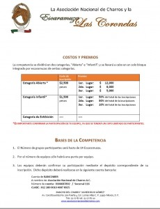 convocatoriaferiavirgen2